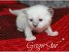 greger_0