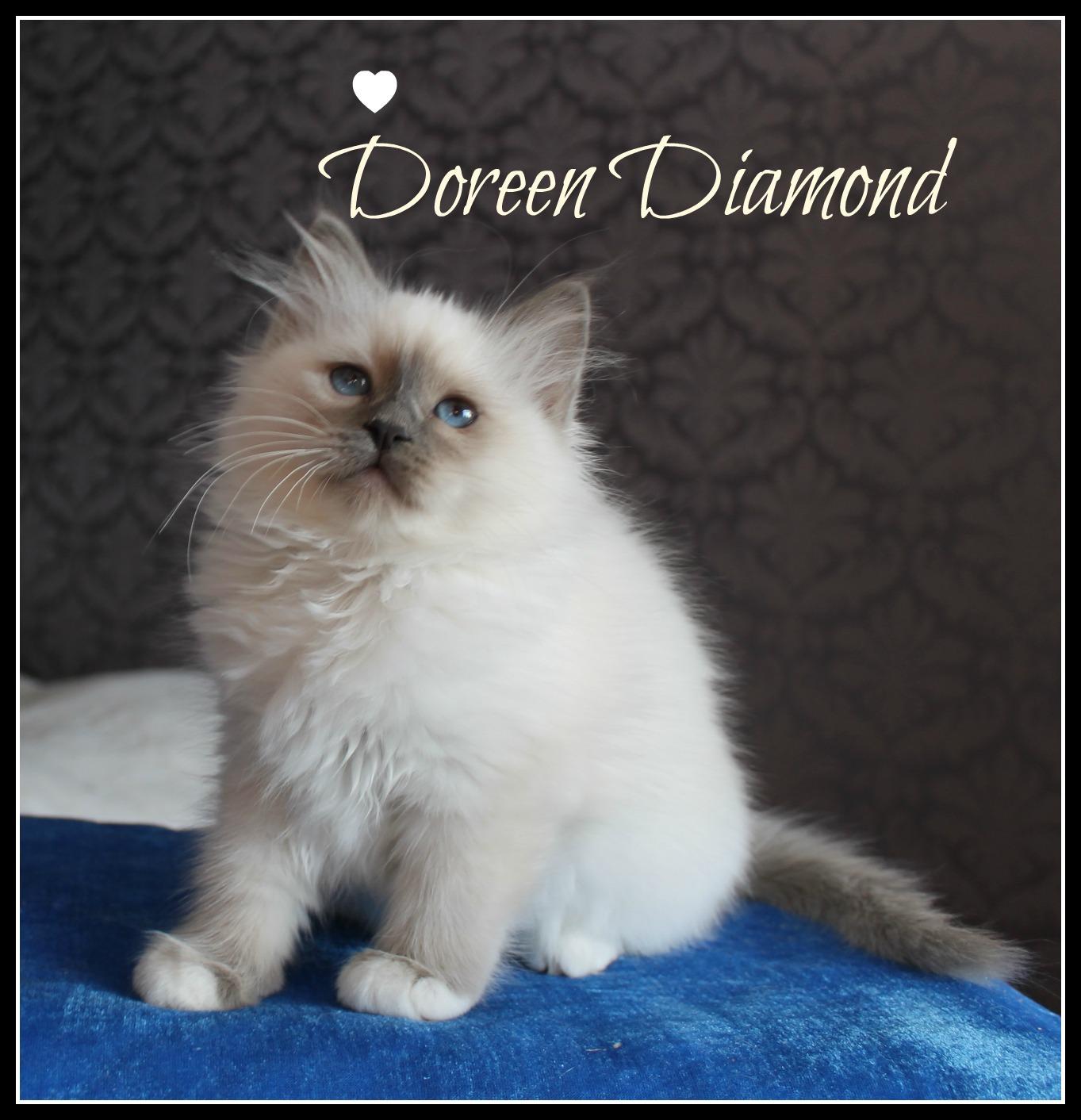 doreen-2